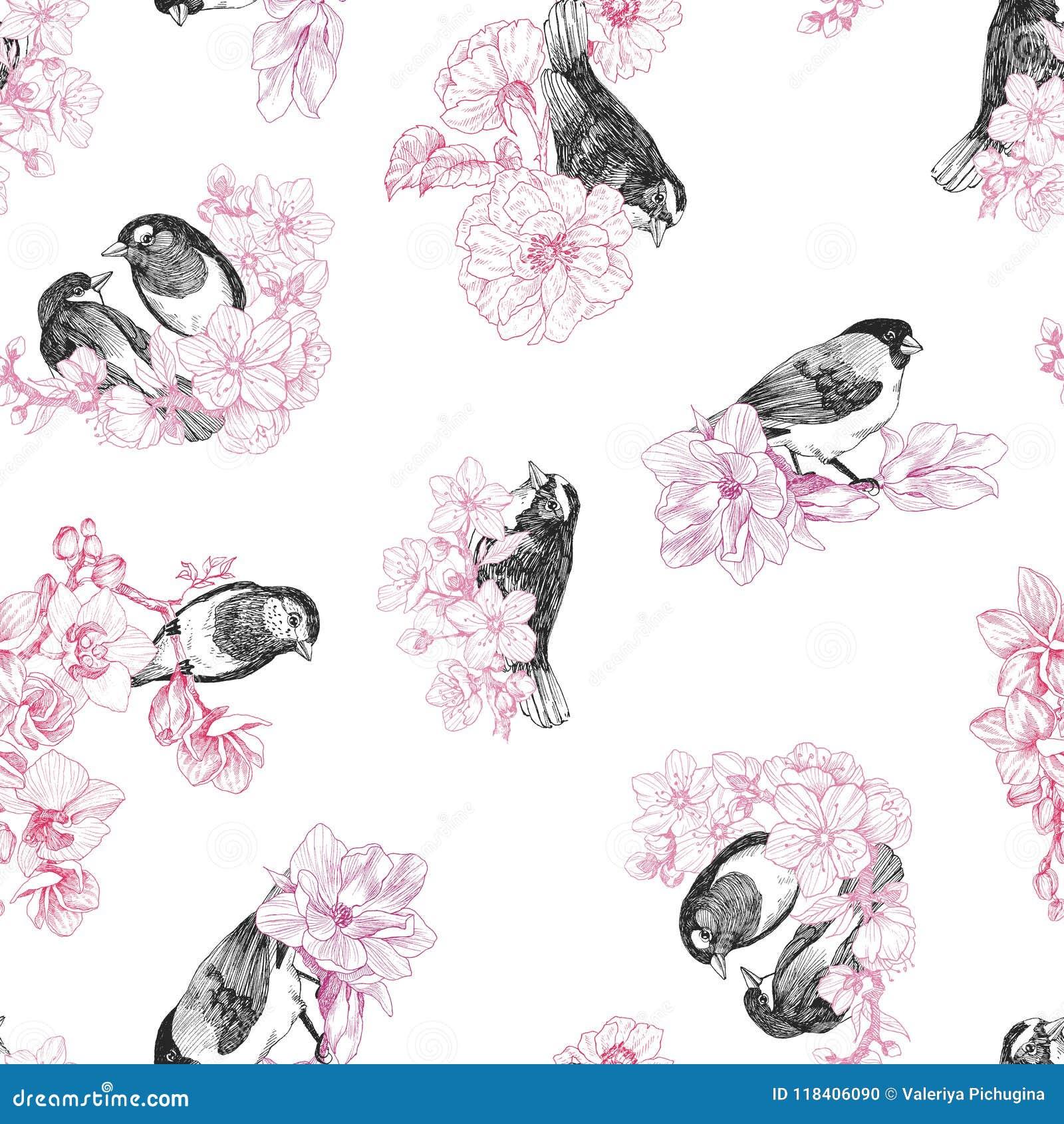 Безшовная картина руки птиц нарисованная в винтажном стиле с цветками Птица весны сидя на ветвях цветения линейно