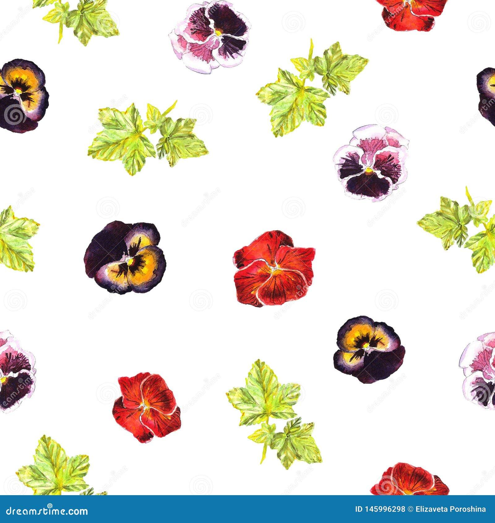 Безшовная картина с рукой watercolour покрасила фиолеты пинка, пурпурных, красных и листья