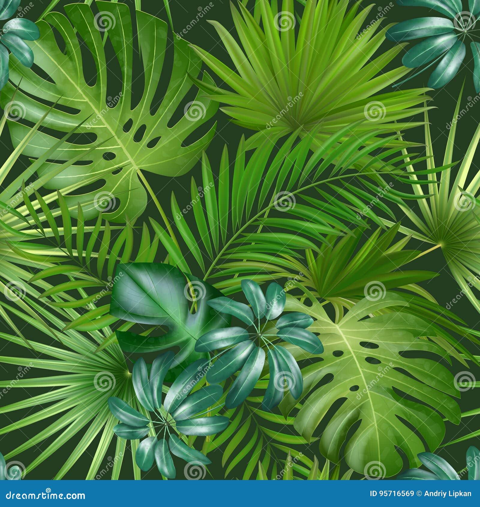 Безшовная тропическая картина с листьями ладони для дизайна или другого ткани пользы
