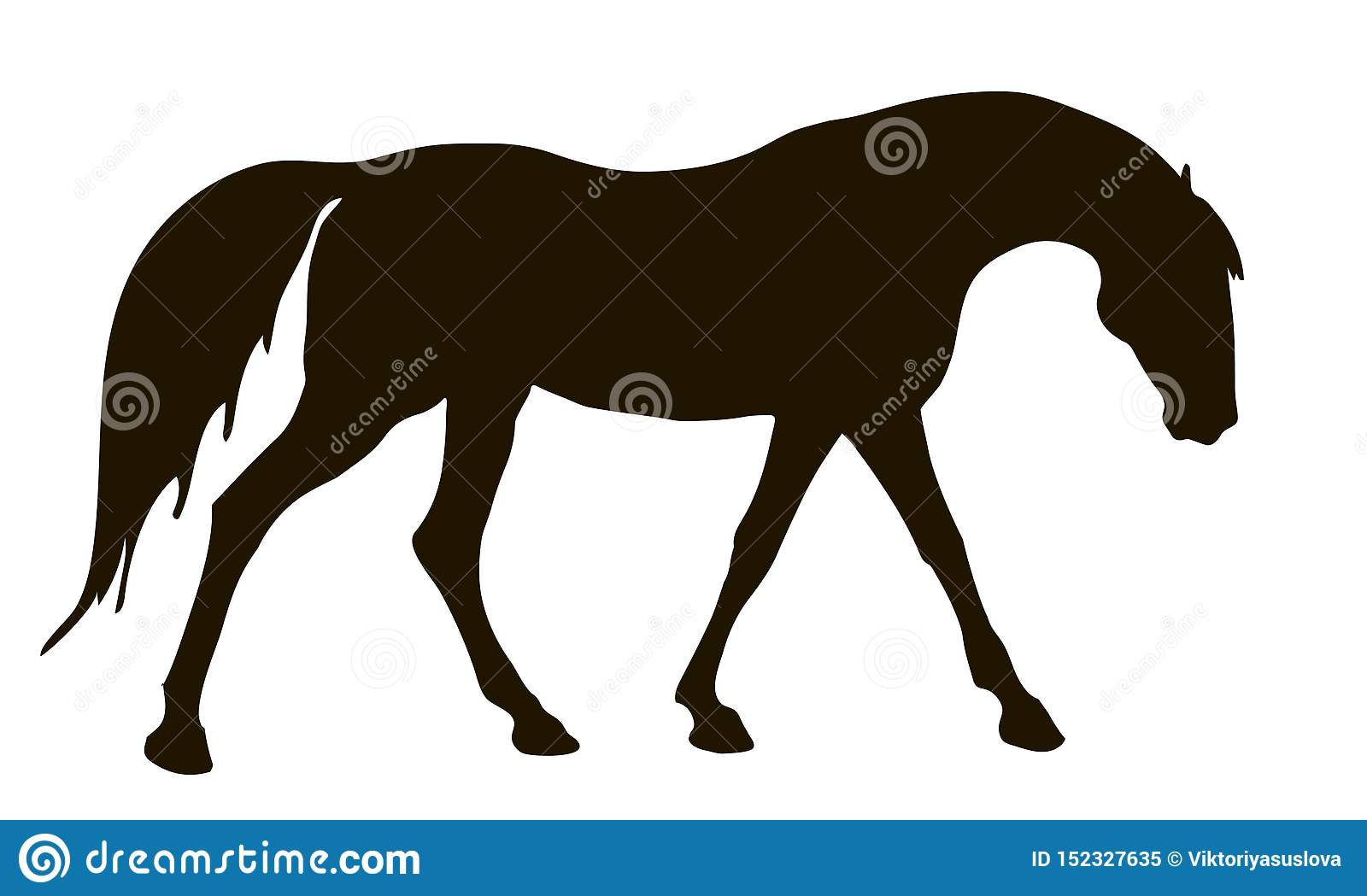 Isolated Image Black Silhouette Of A Walking Horse On A White Background Stock Illustration Illustration Of Graphic Isolated 152327635