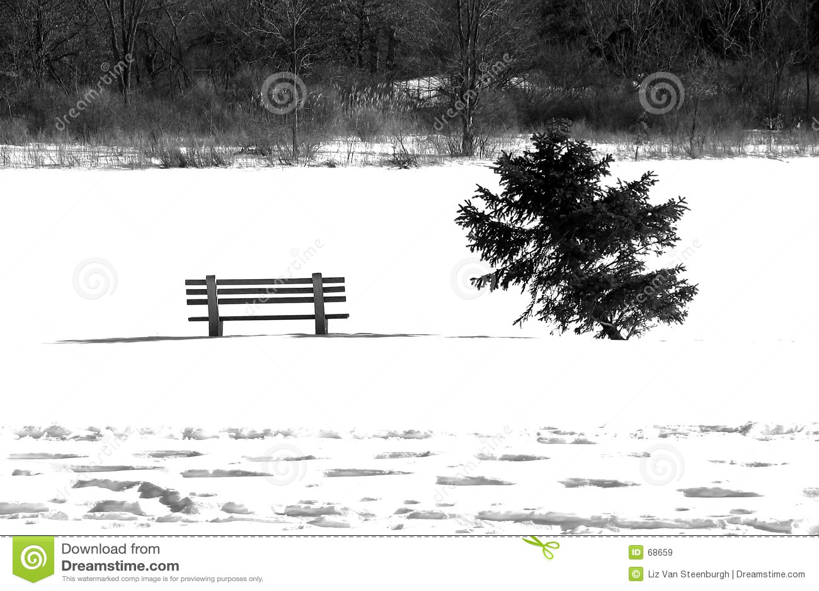 белая зима