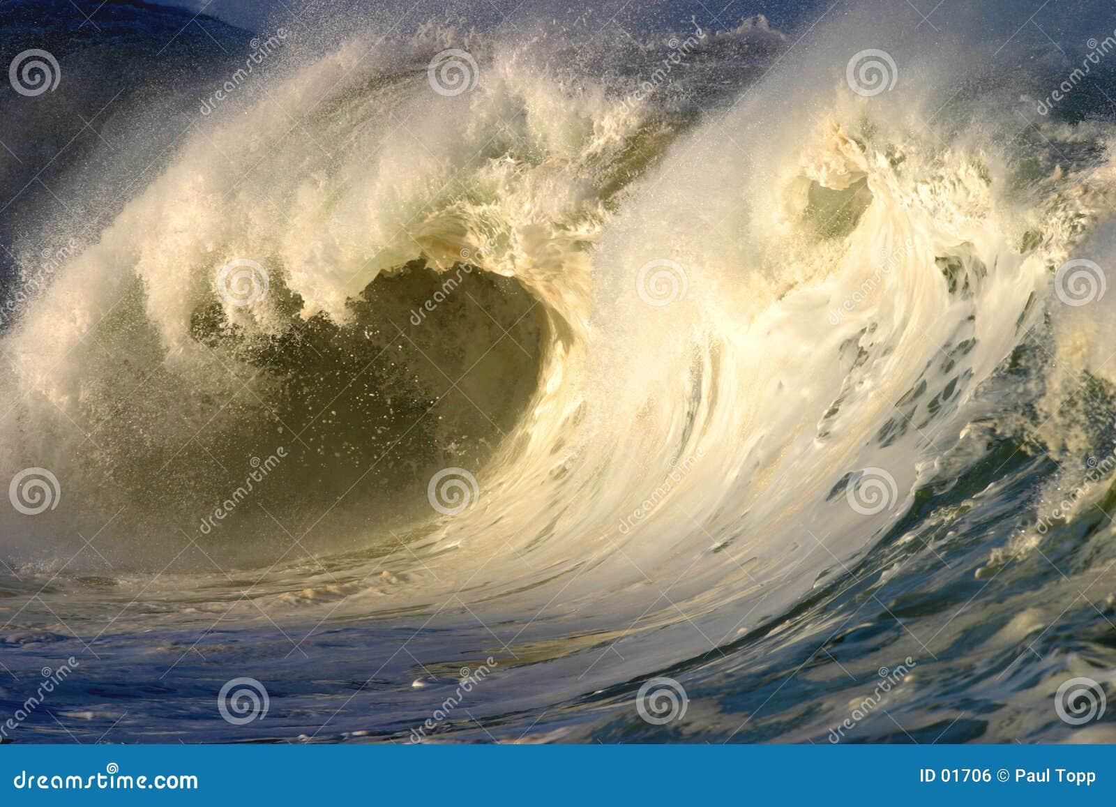 белизна волны Гавайских островов мощная