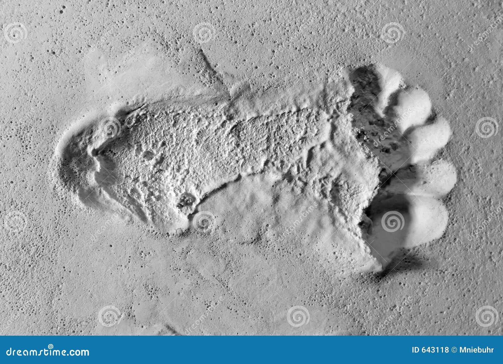 Download белизна впечатления следа ноги песочная одиночная поверхностная Стоковое Фото - изображение насчитывающей одиночно, текстура: 643118