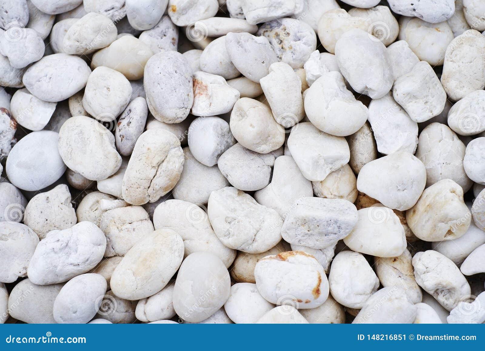 Белый маленький камень в предпосылке