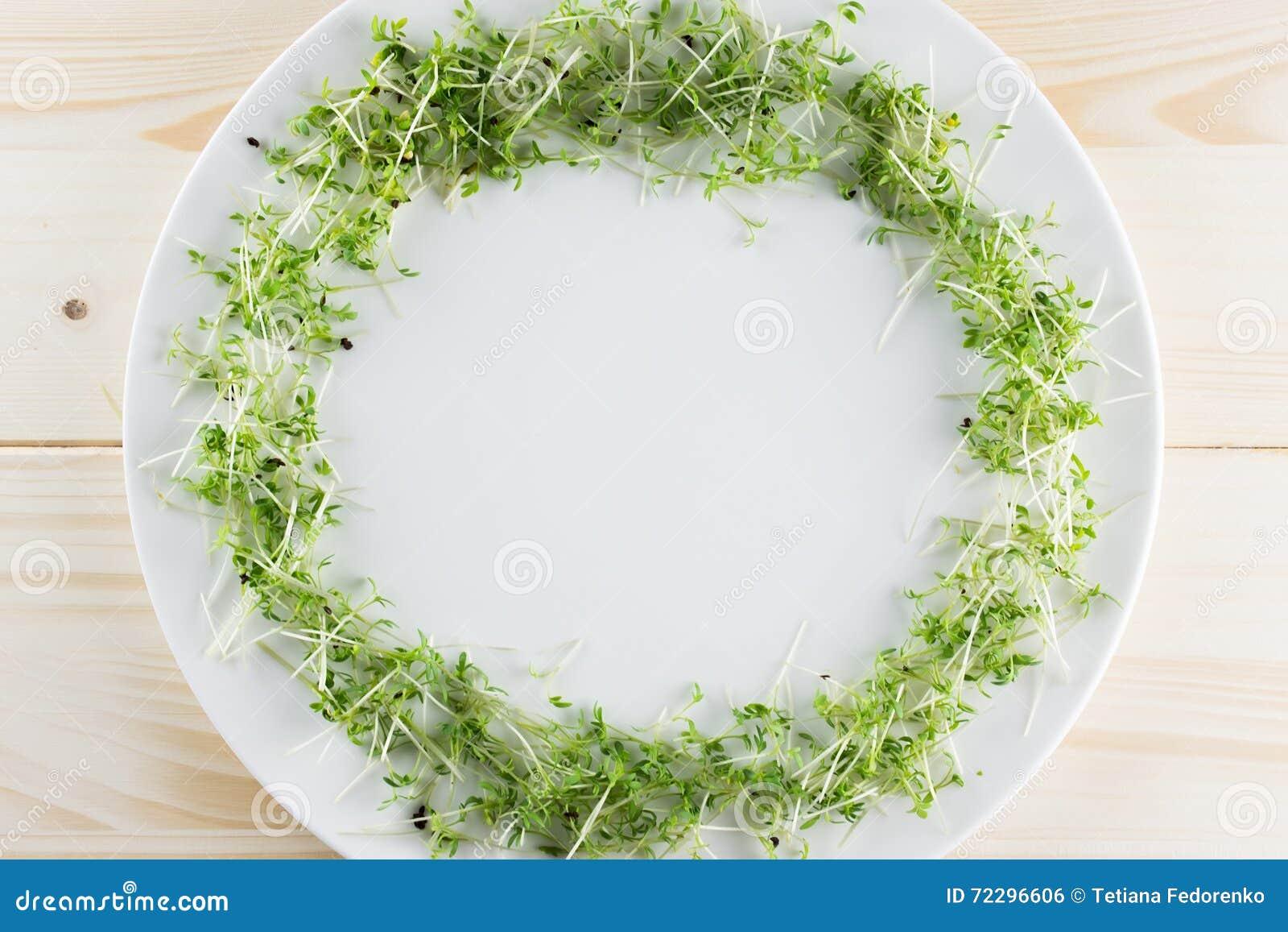 Download Белая плита с рамкой салата кресса на деревянной предпосылке К Стоковое Фото - изображение насчитывающей смешанно, свежесть: 72296606
