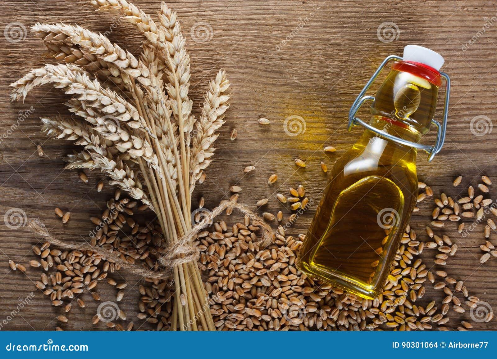 белизна пшеницы масла иллюстрации семенозачатка падения предпосылки стилизованная