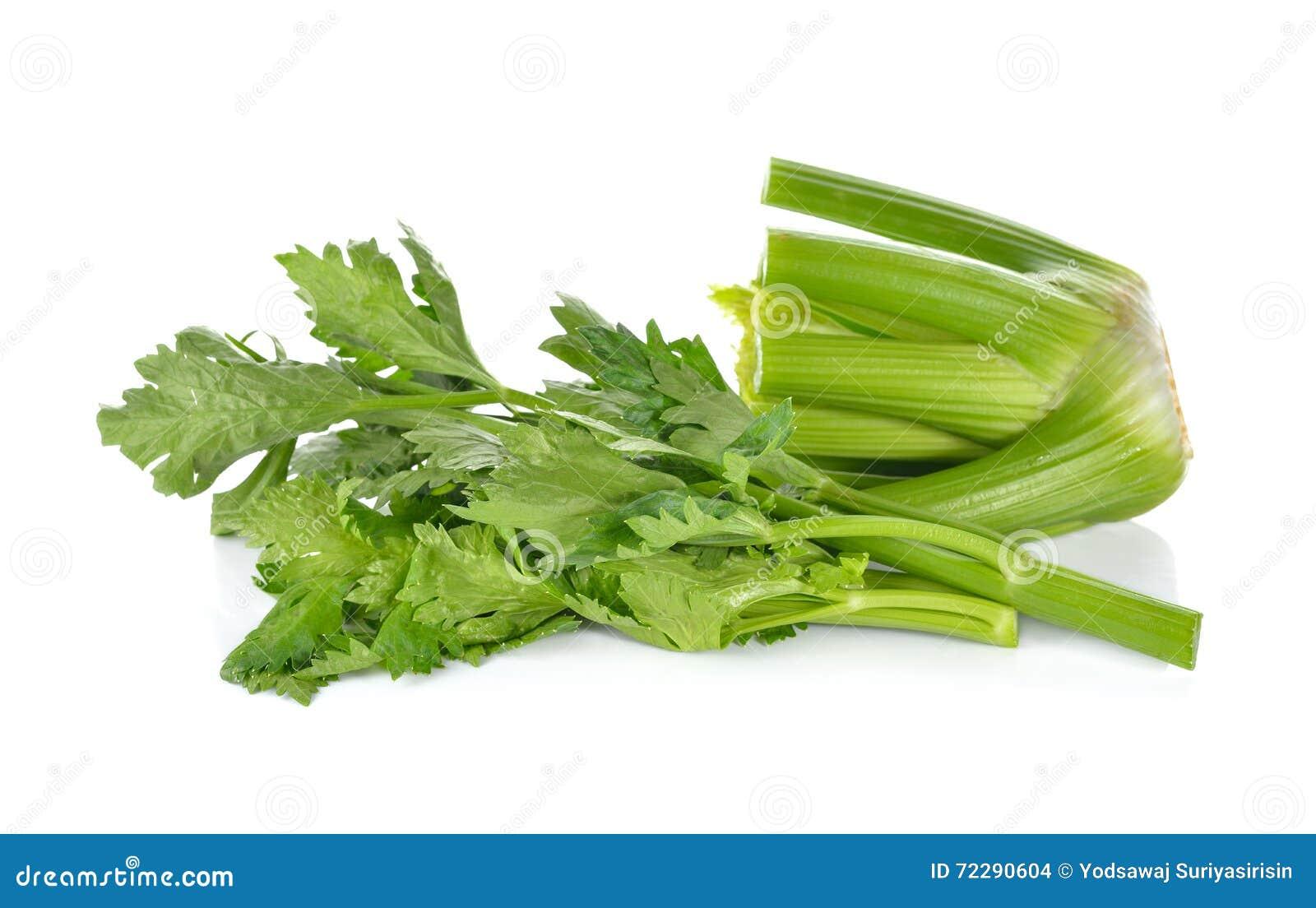 Download белизна сельдерея предпосылки свежая Стоковое Фото - изображение насчитывающей green, сырцово: 72290604