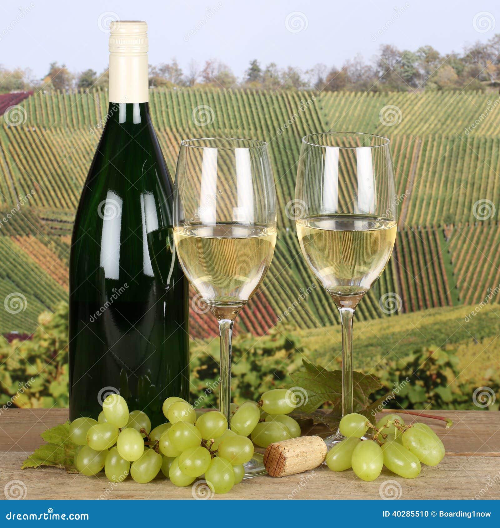 Белое вино в стеклах в виноградниках