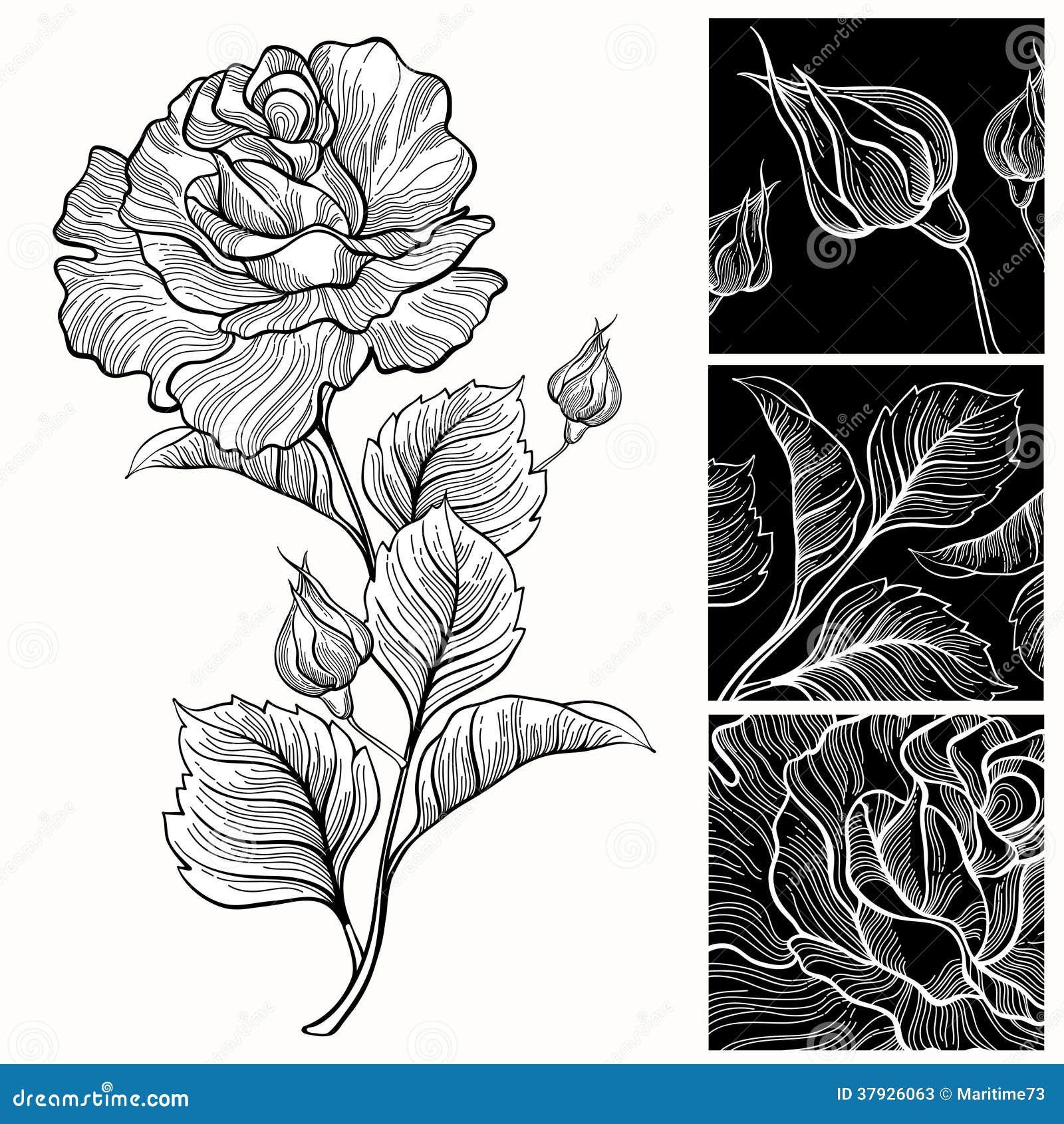Белые и черные розы.