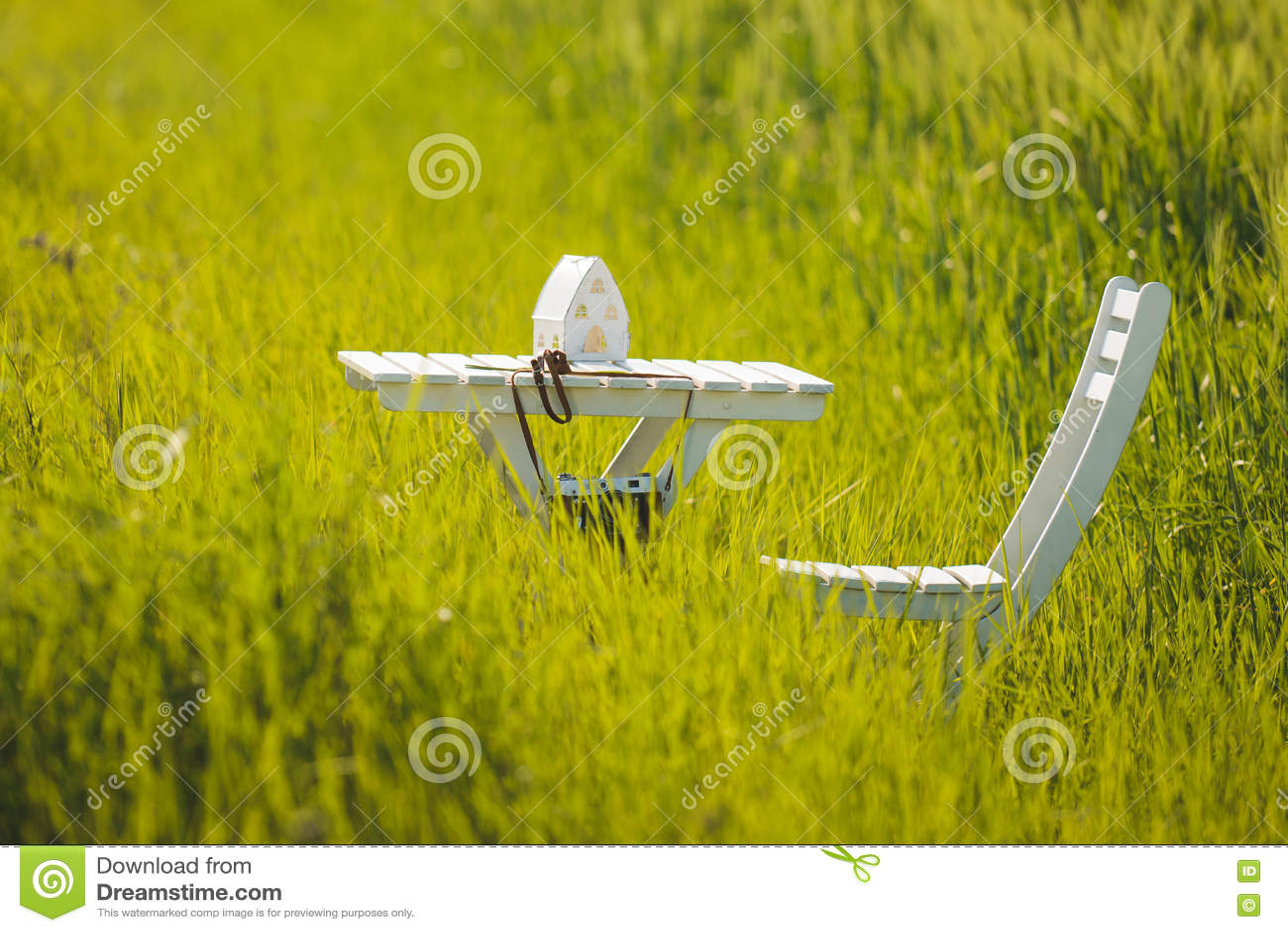 Download Белые таблица и стул в траве Стоковое Изображение - изображение насчитывающей green, идиллично: 72293353