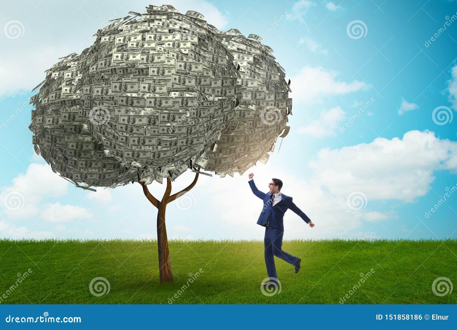 Бизнесмен с деревом денег в концепции дела