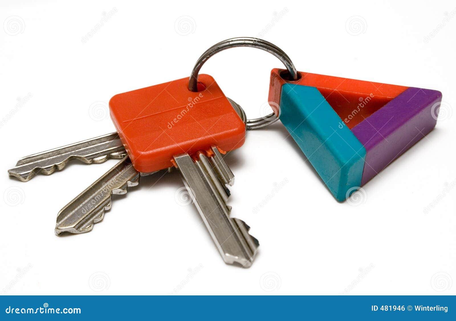бирка ключей w пука цветастая