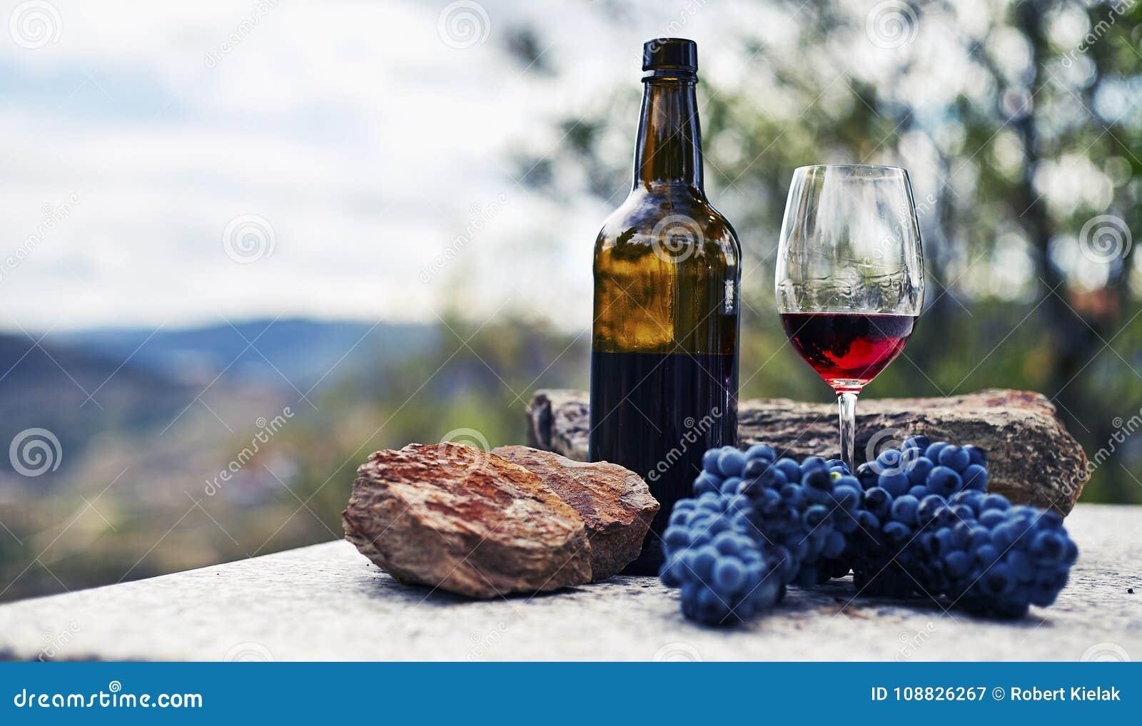 Благоустраивайте взгляд на старом каменном здании с дорогой и деревьях на винограднике