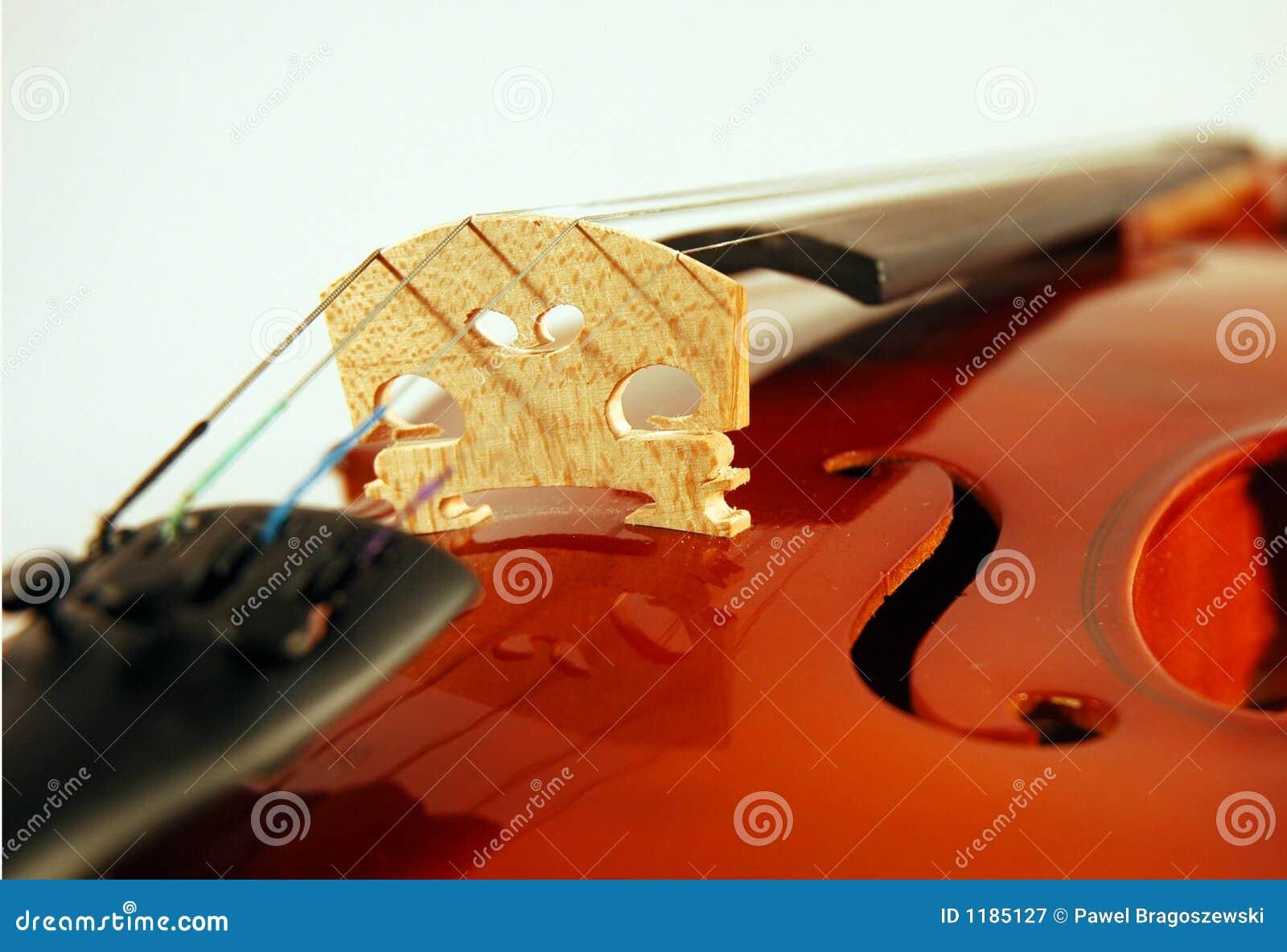 близкая скрипка вверх