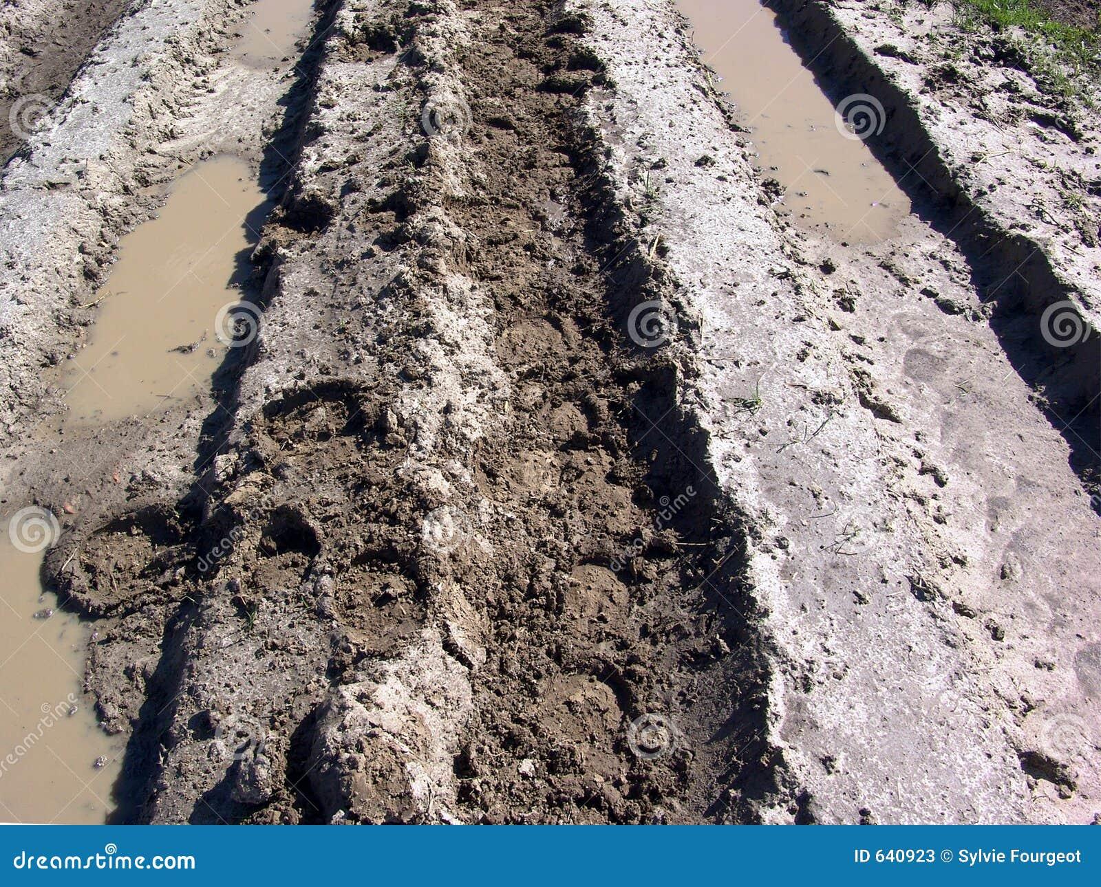 Download близкая тинная дорога вверх Стоковое Изображение - изображение насчитывающей перевозка, лошадь: 640923