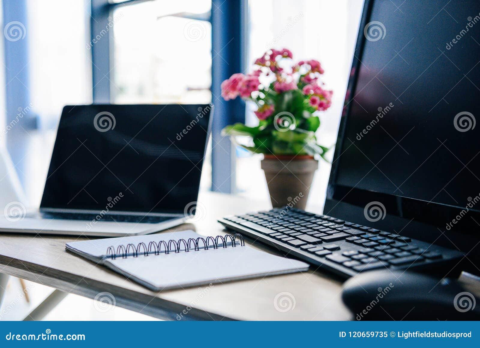 близкий поднимающий вверх взгляд пустого учебника, ноутбука, цветков в баке, компьютера, клавиатуры компьютера и мыши компьютера