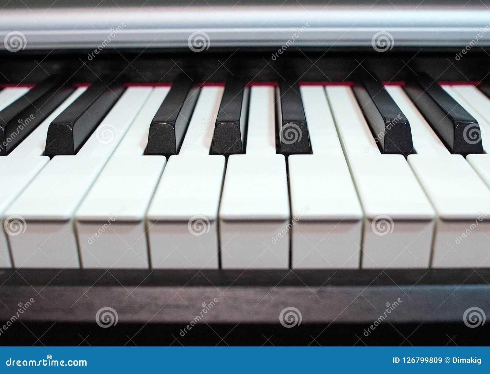 близкий рояль клавиатуры вверх Элементы музыкального инструмента