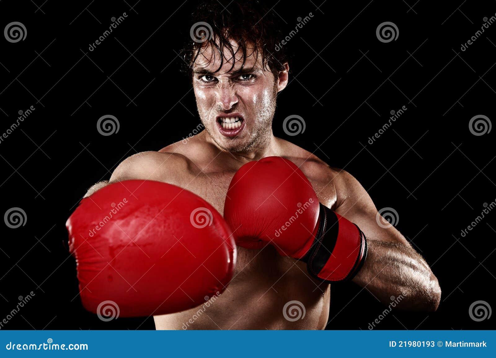 Боксер бокса