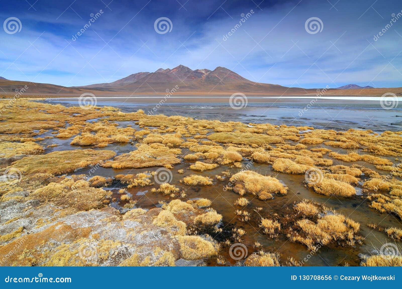 Боливия, озеро в провинции Sur Lipez, отдел Blanca Laguna Potosi
