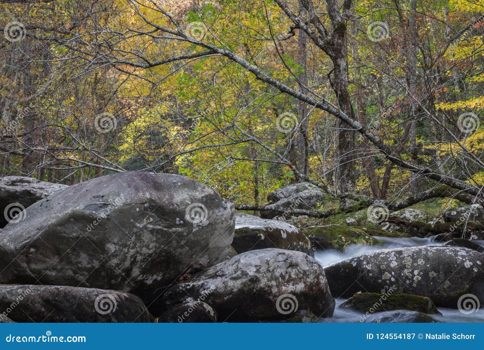 Большая верхняя часть дерева deadfall через поток с большими утесами в ландшафте осени