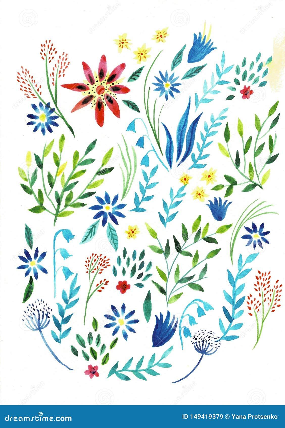 Большая установленная иллюстрация акварели Ботаническое собрание заводов диких и сада Установите: листья, цветки, ветви, травы