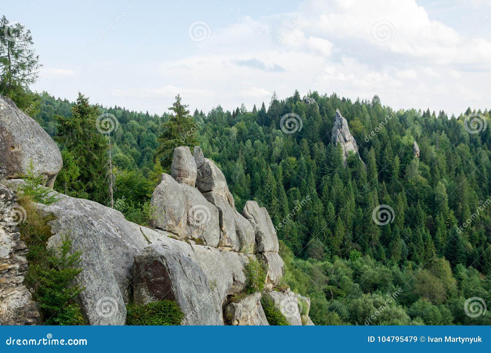 Большие утесы среди леса