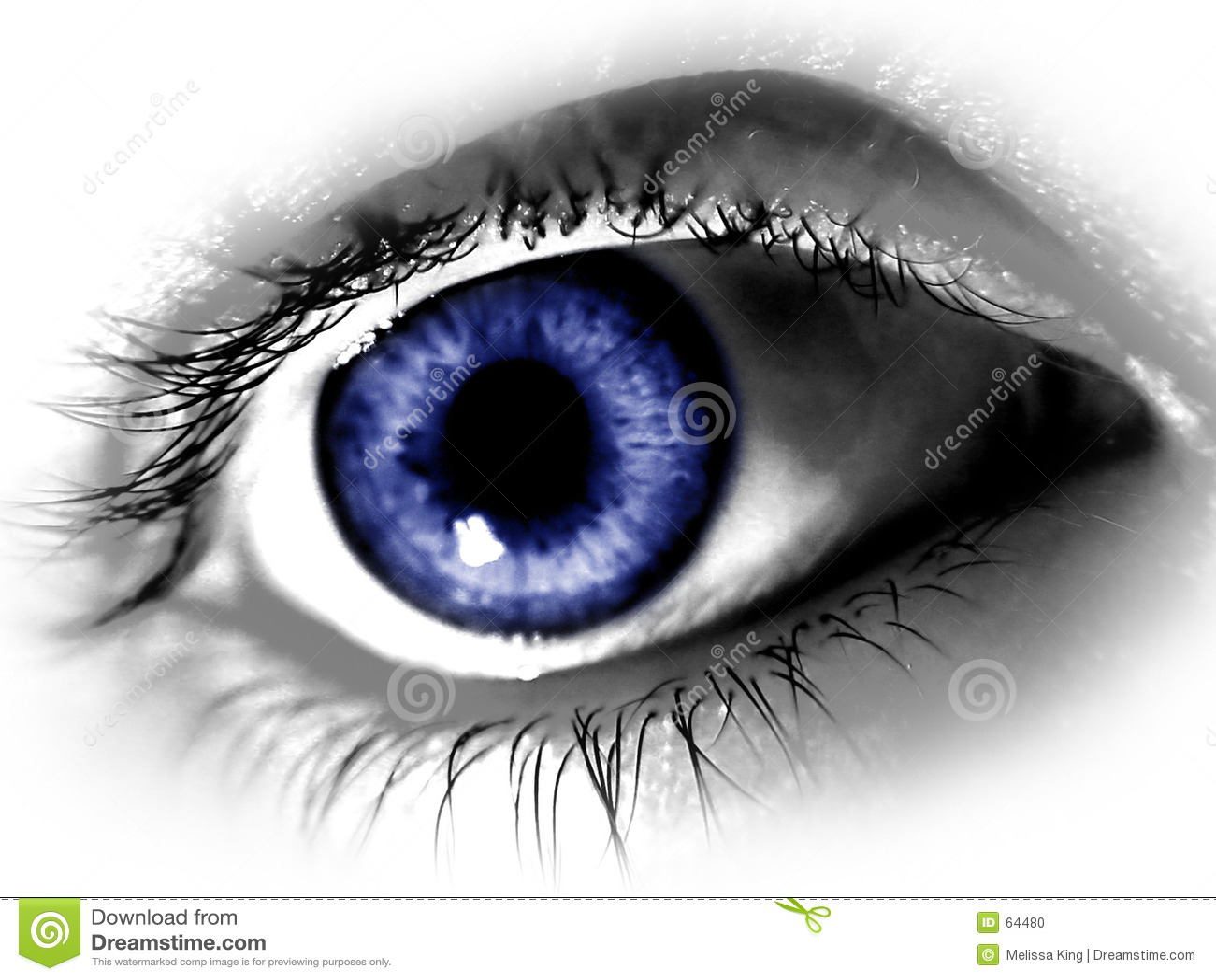 большой голубой глаз