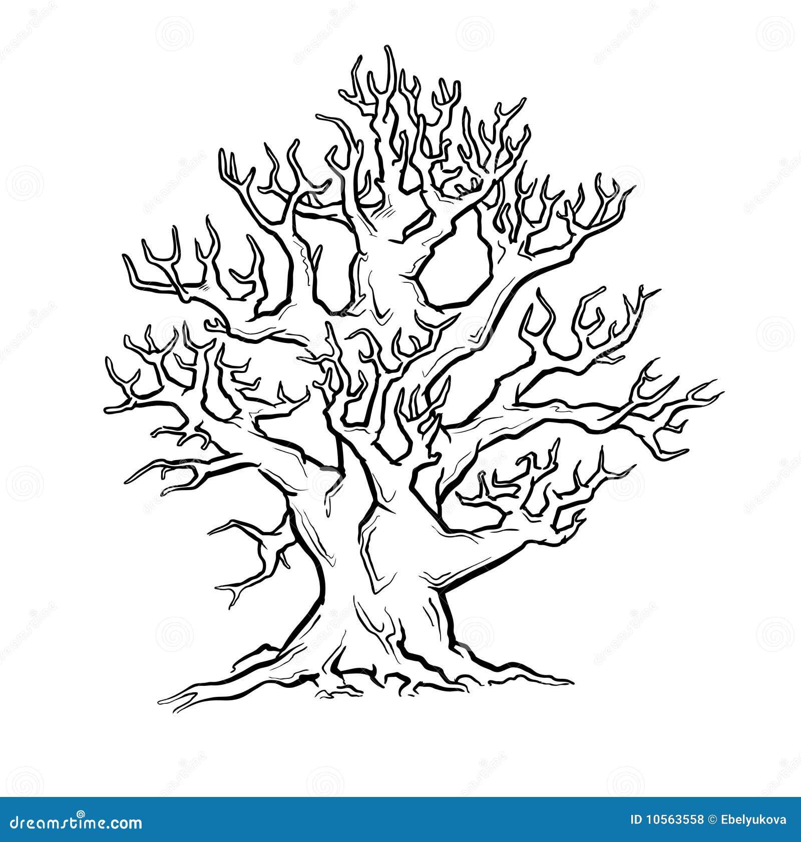 Мудрое дерево рисунки карандашом 2