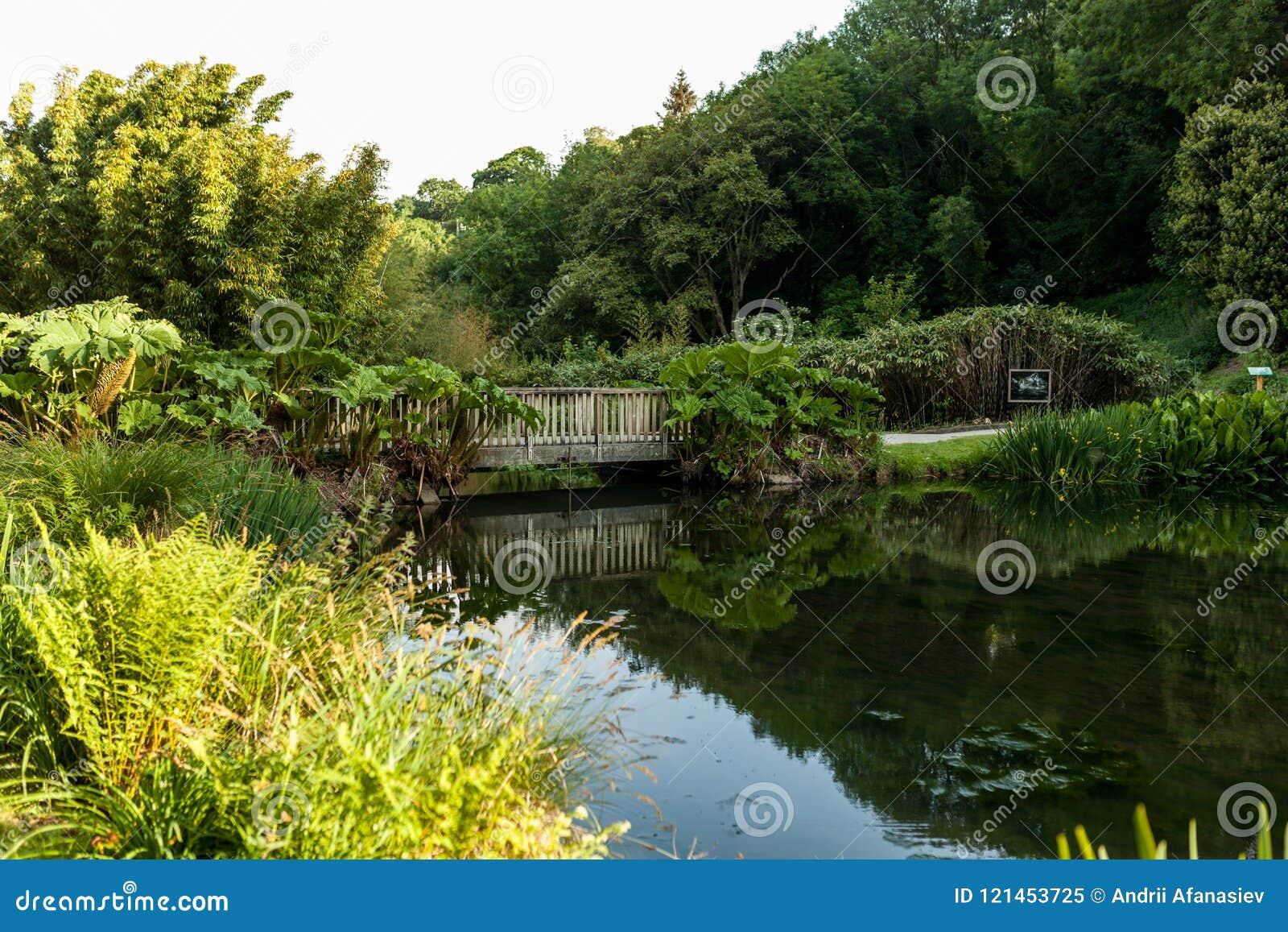 Ботанический сад Le Vallon du ужалил Alar Брест Францию 27 может 2018 - сезон лета небольшого озера и моста