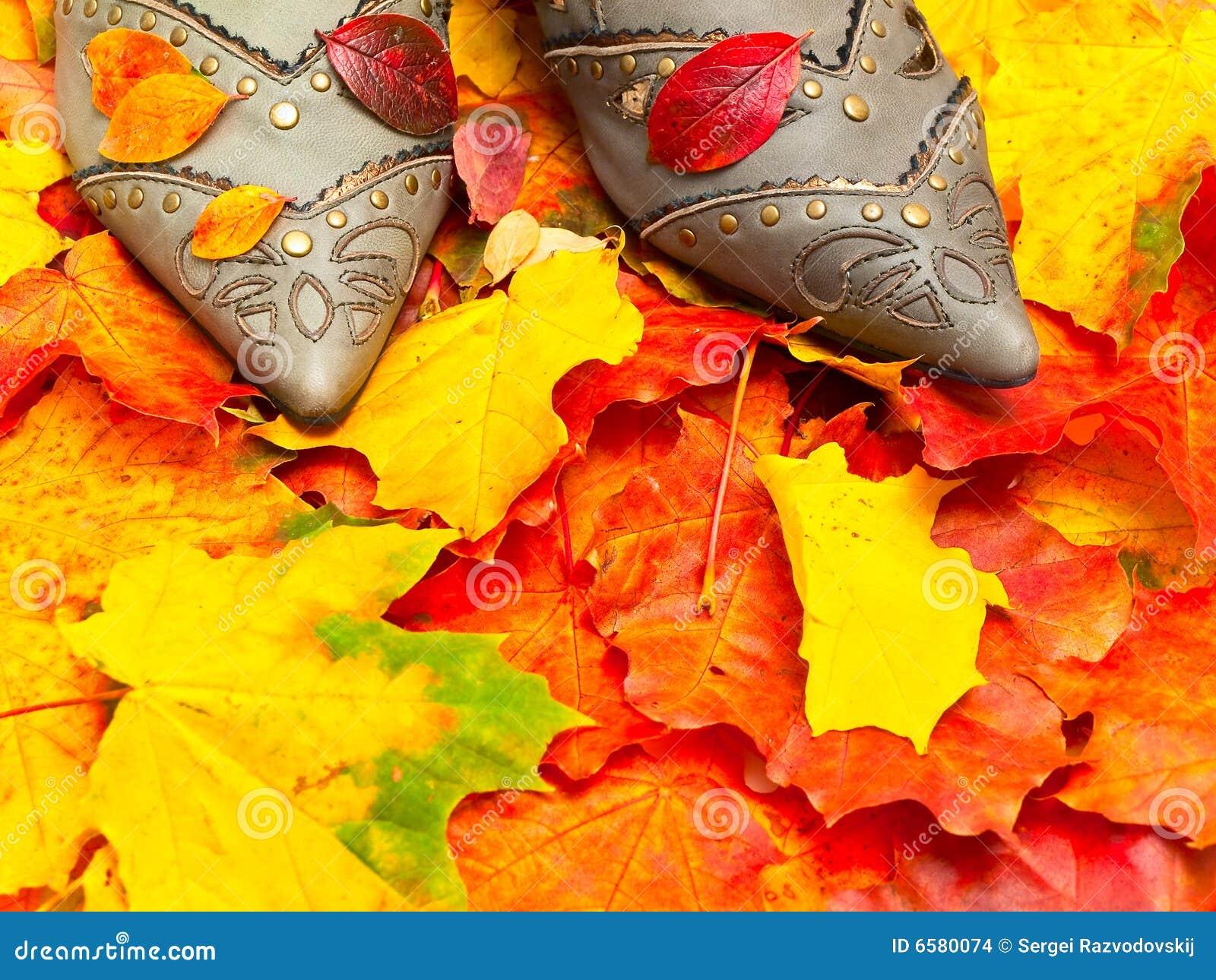 ботинки листьев осени