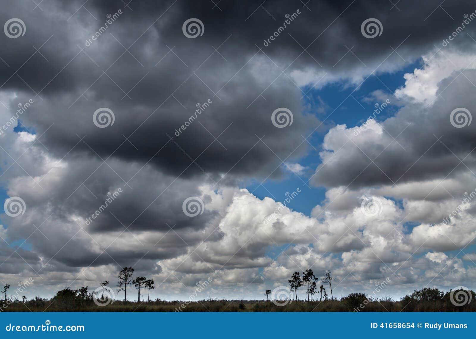Болотистые низменности благоустраивают, облака