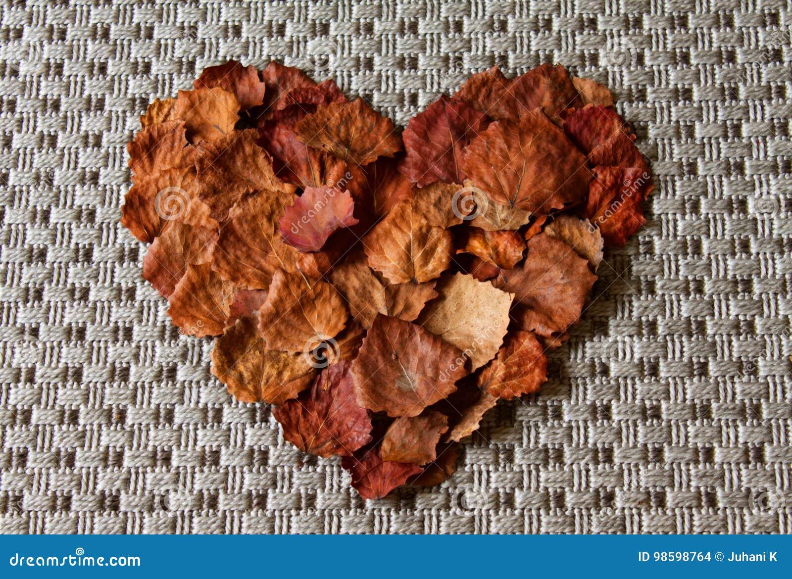 Большое сердце сделанное от листьев осени/лист