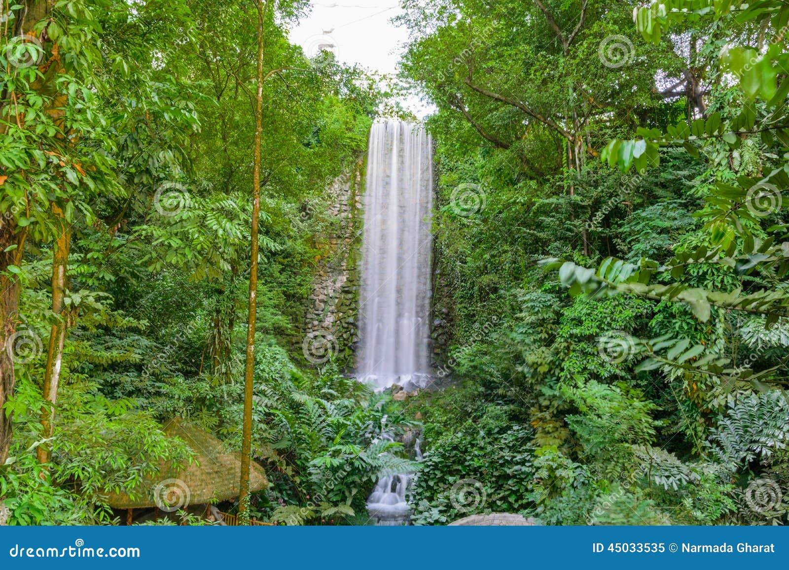 Большой вертикальный водопад в дождевом лесе