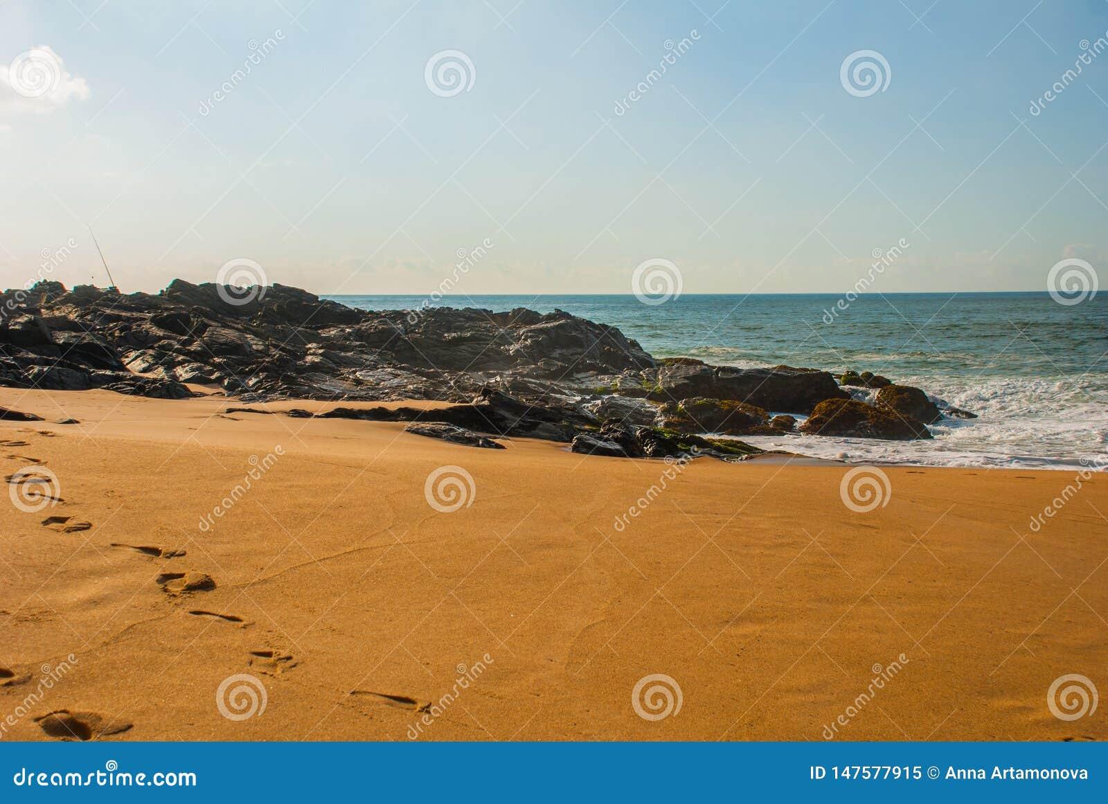 Бразильский пляж с желтым песком и голубое море в солнечной погоде r Сальвадор Южная Америка