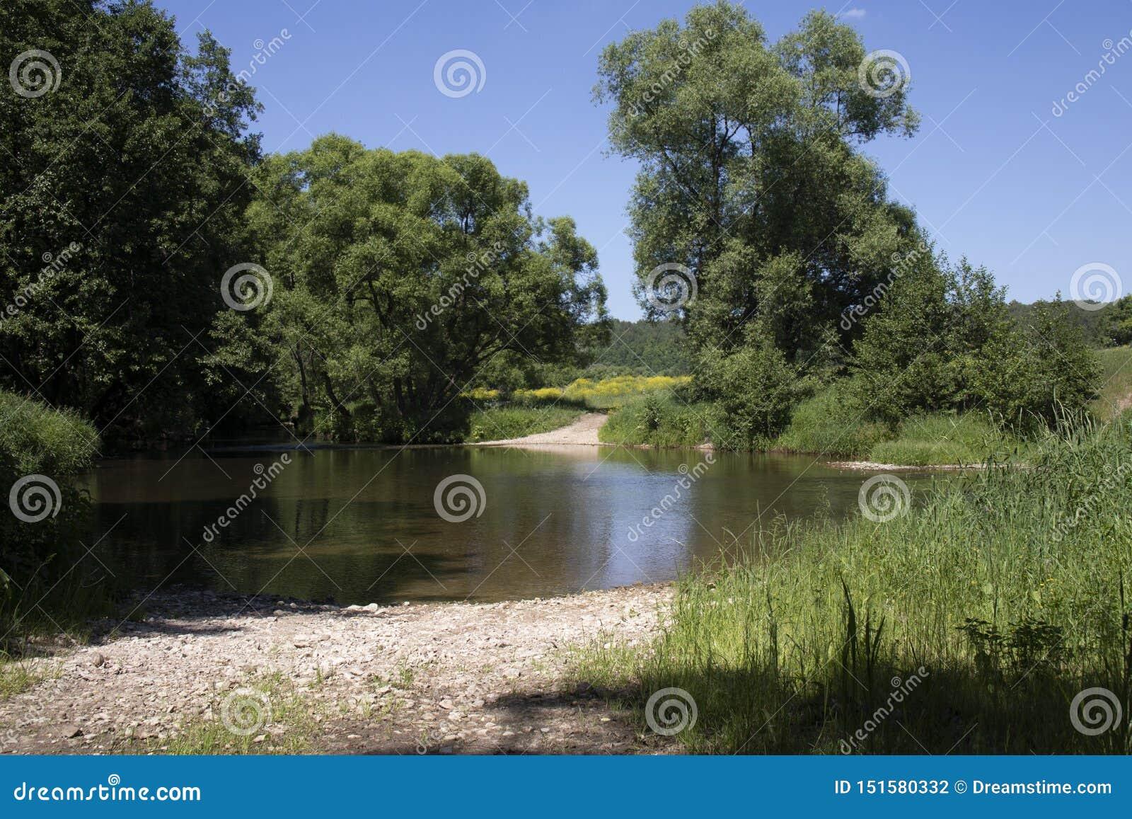 Брод Форда проходя пруд в небольшом реке леса
