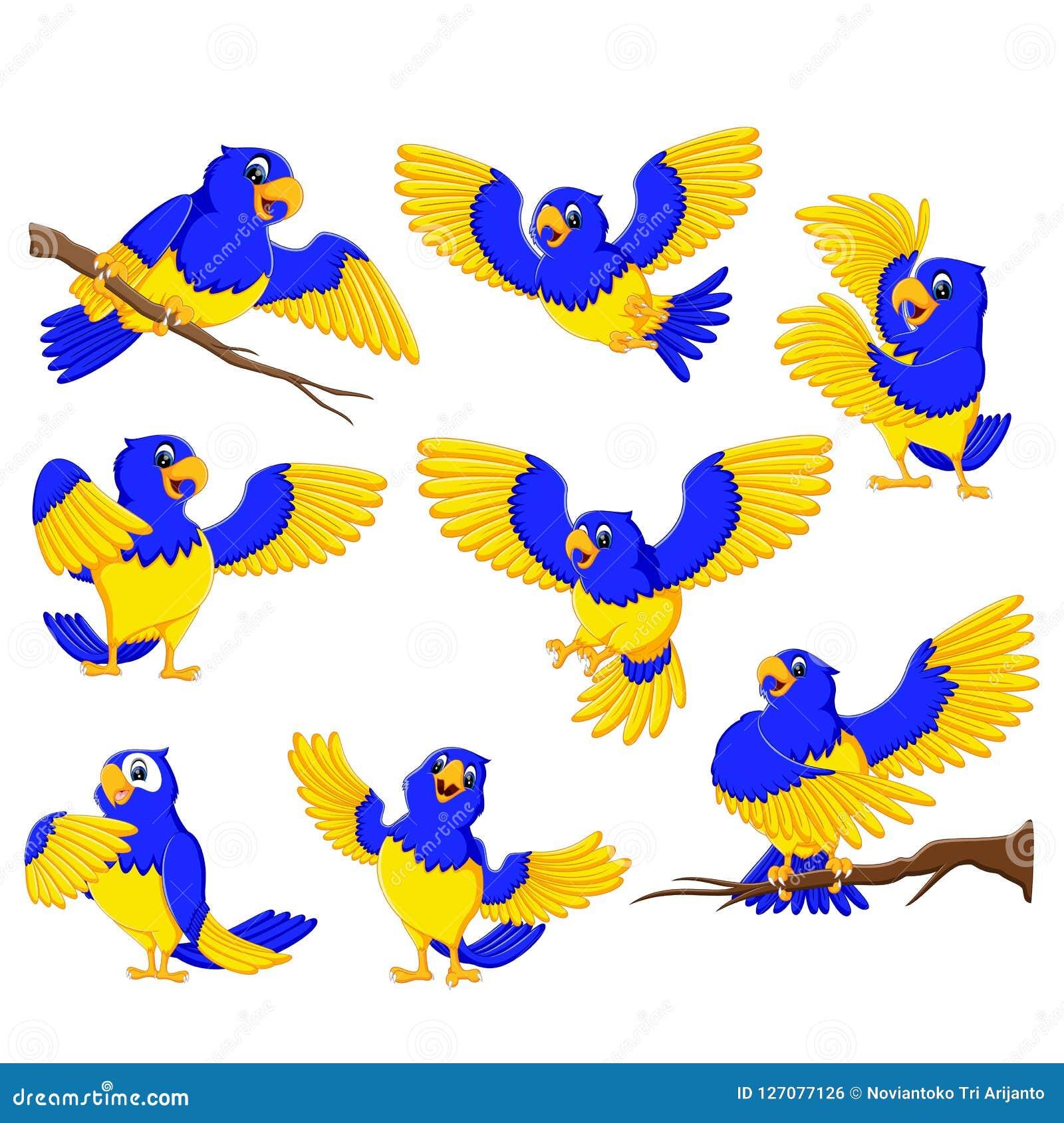 Бросаясь попугаи с акцентом золота