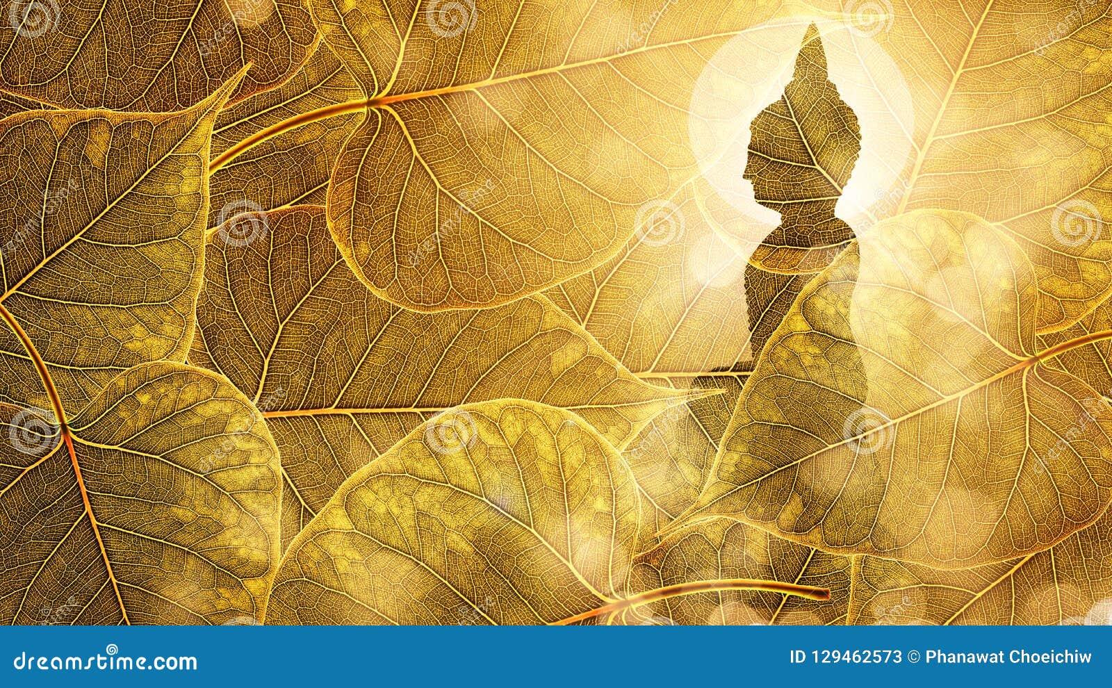 Будда сидит на двойной экспозиции или silhouet предпосылки boleaf золота