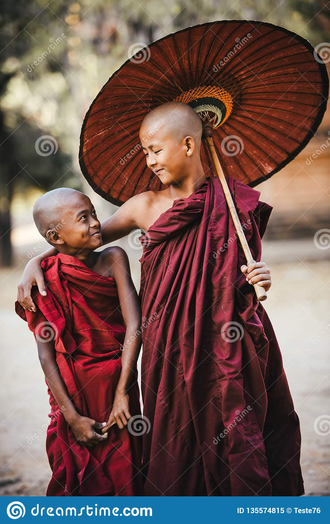 буддийские монахи Друзья
