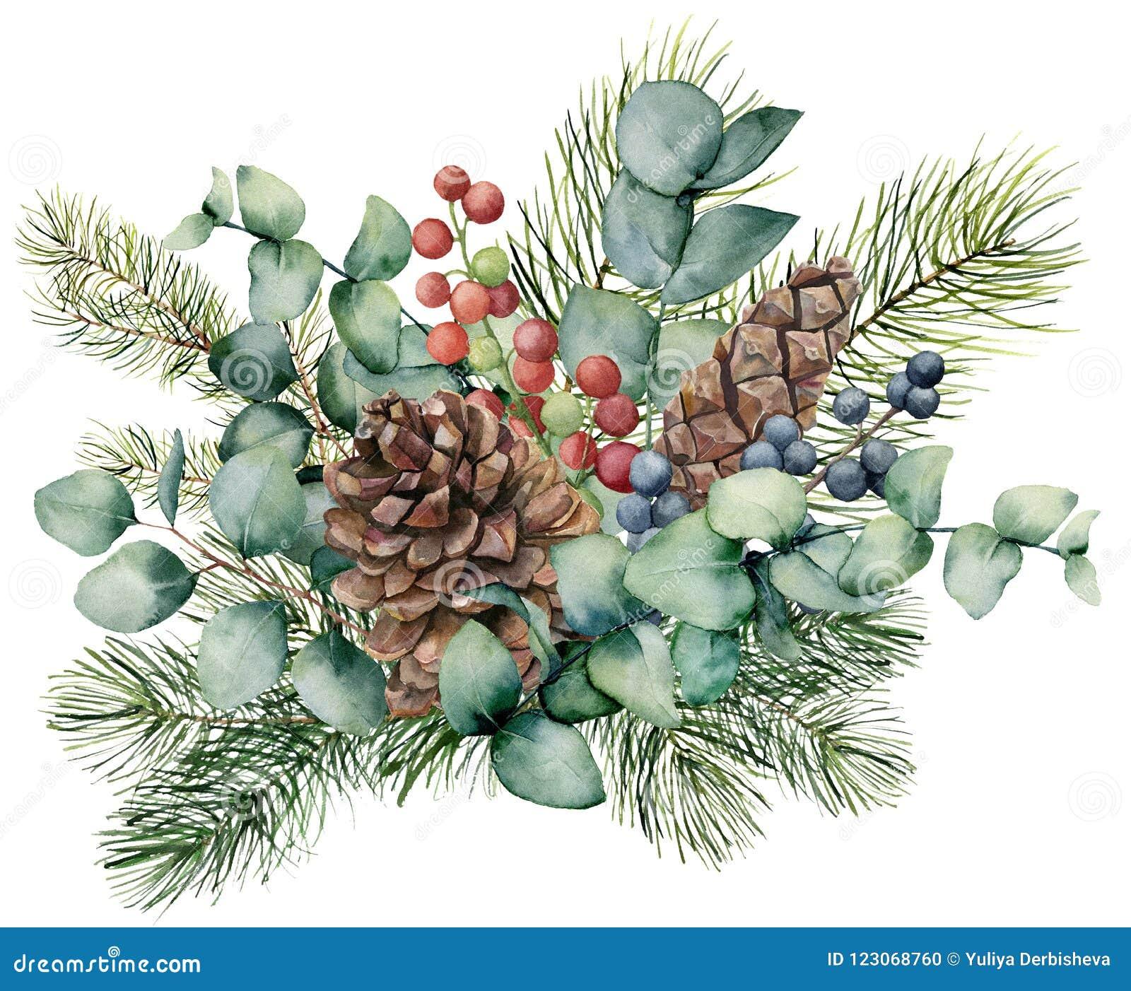 Букет акварели с листьями евкалипта, конусом, ветвью ели и ягодами Рука покрасила зеленые ягоды завтрак-обеда, красных и голубых