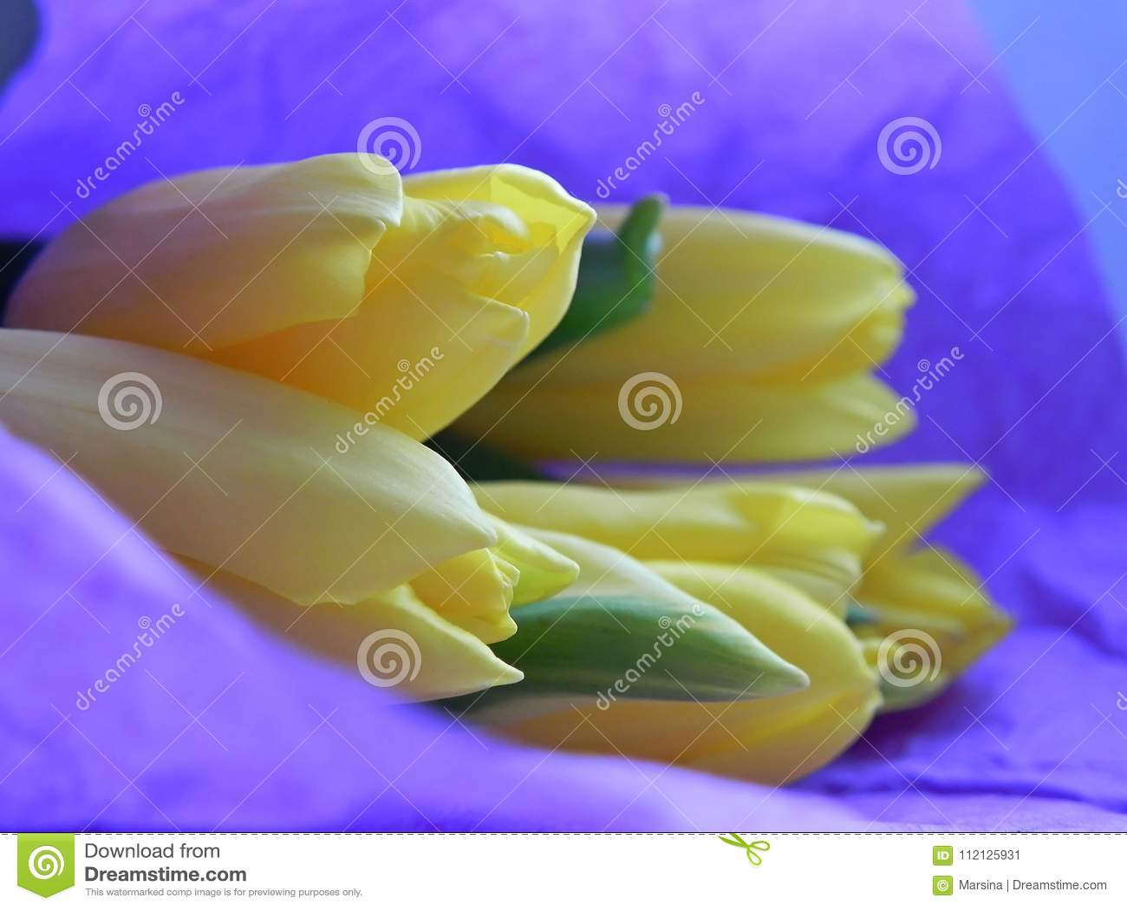 Букет из фиолетовых и желтых тюльпанов — photo 1