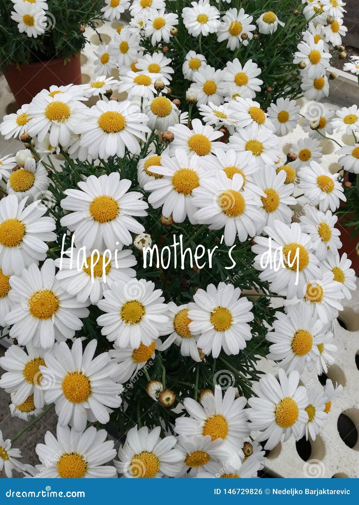 Букет красивых цветков на День матери