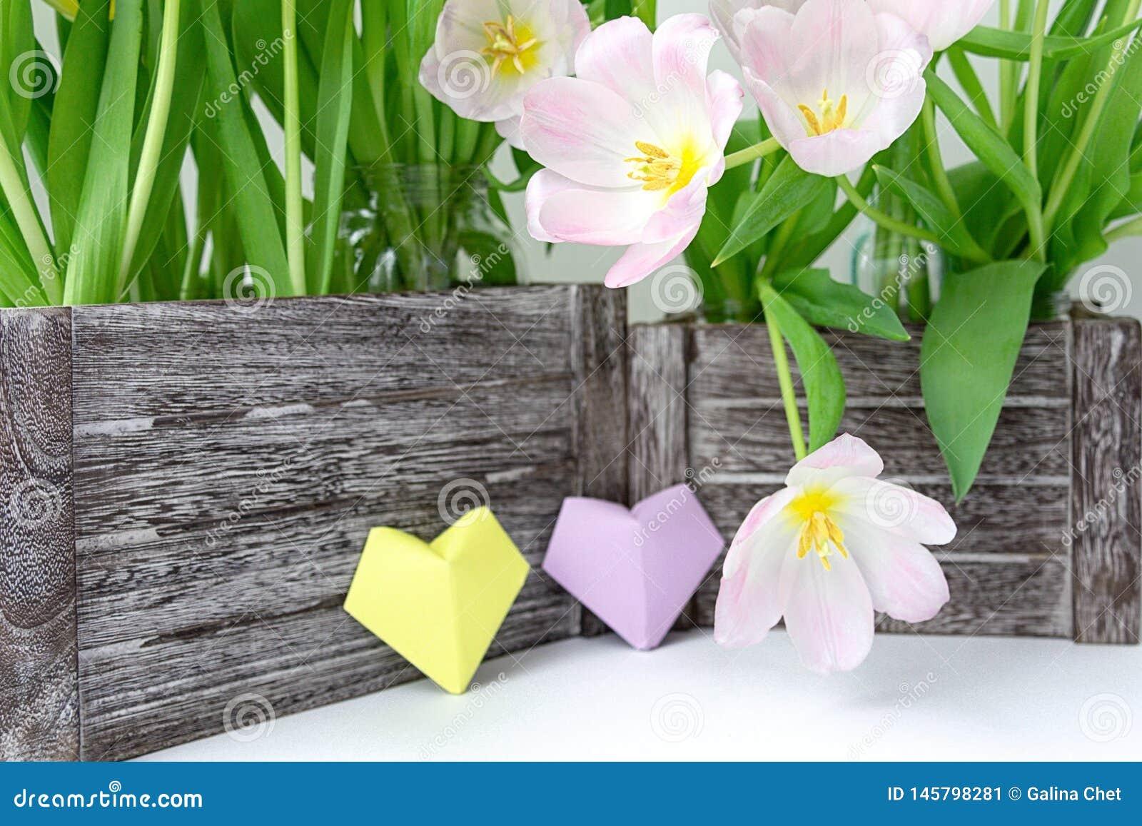 Букет розовых тюльпанов в деревянной коробке и 2 бумажных сердцах желтого цвета и цвета сирени на белой предпосылке