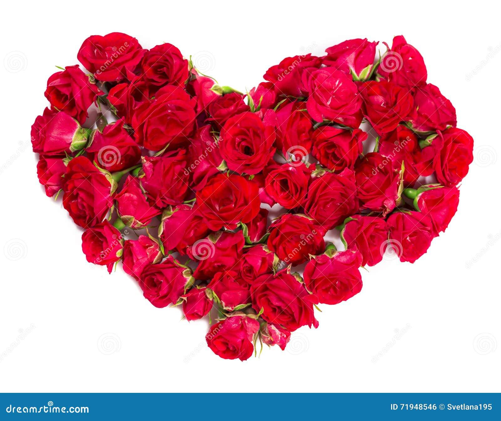Букет роз аранжированных, что сформировать элемент сердца или дизайна для флористических тем