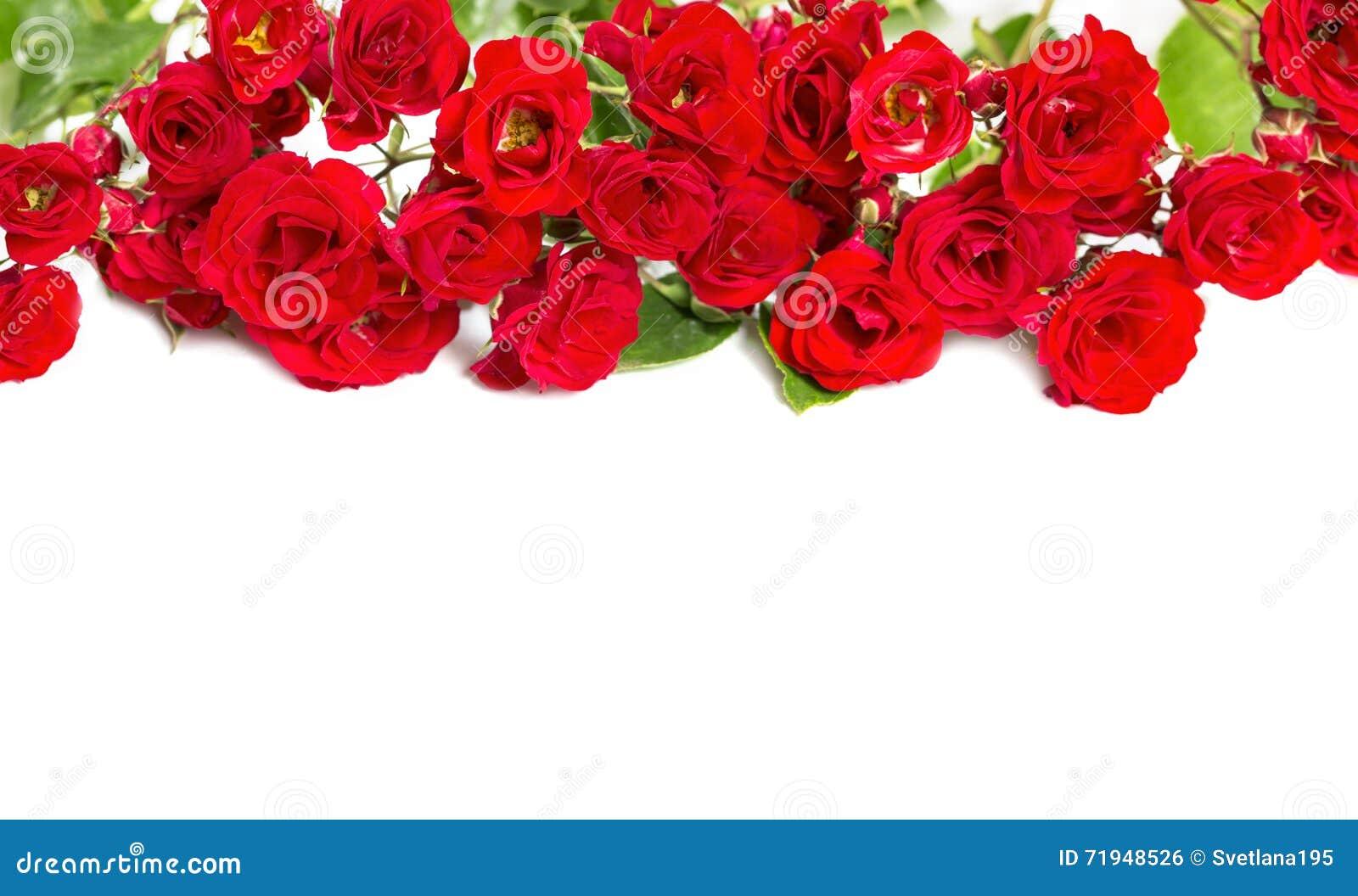 Букет роз - элемент для флористических тем