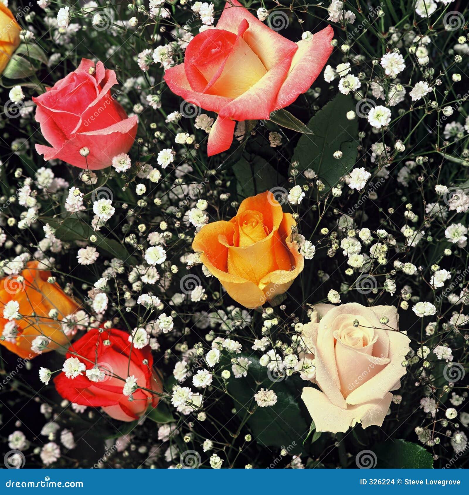 букет флористический