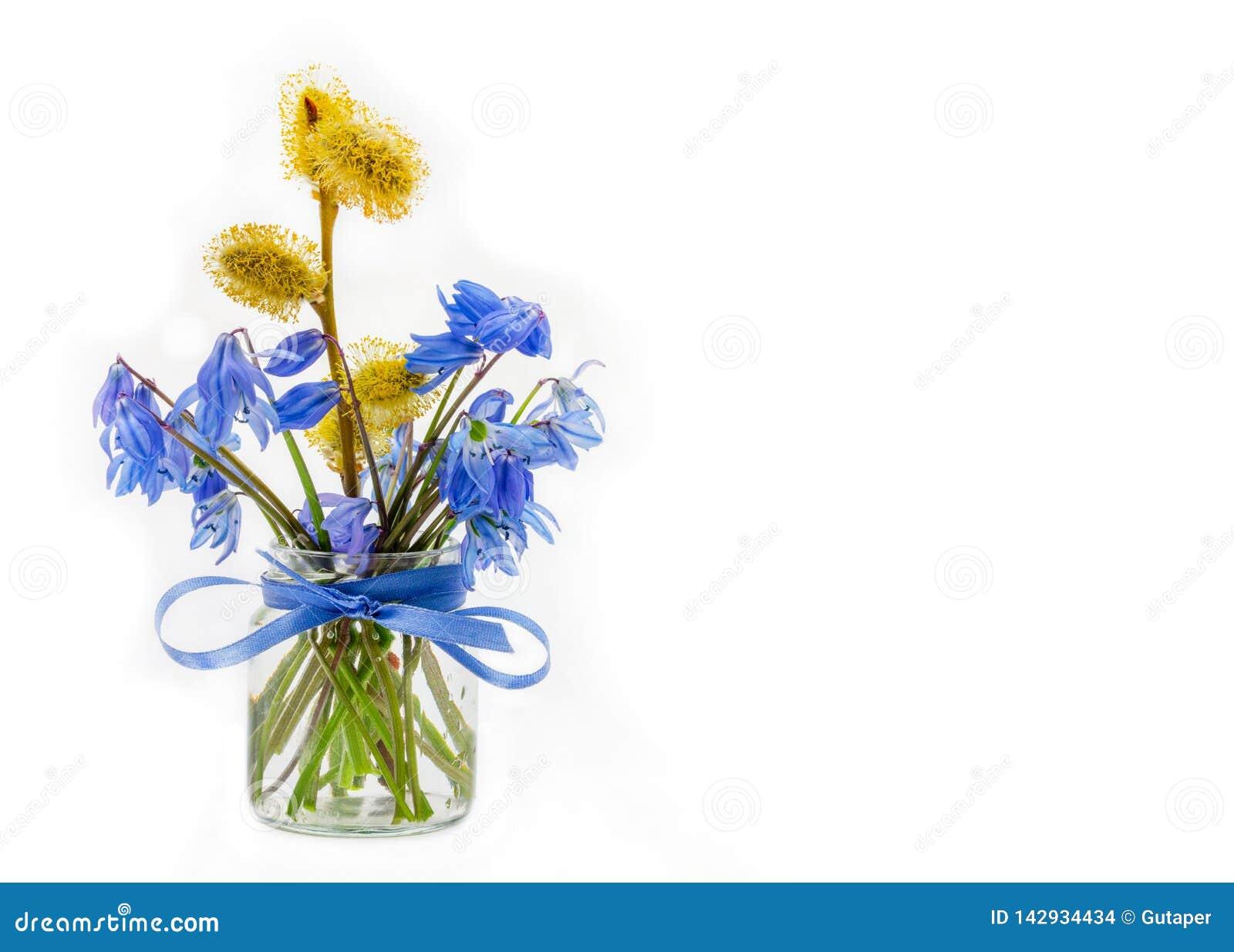 Букет bluebell и sprig цветя вербы в стеклянном опарнике со смычком голубой ленты на белой предпосылке