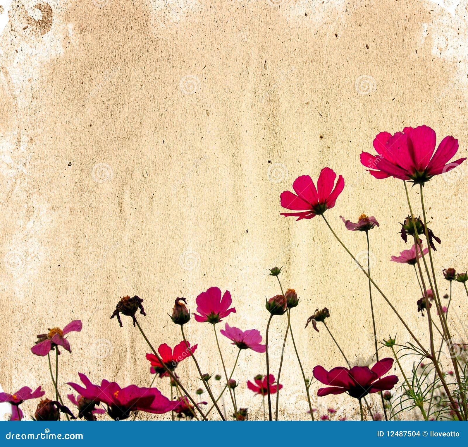 бумага цветка