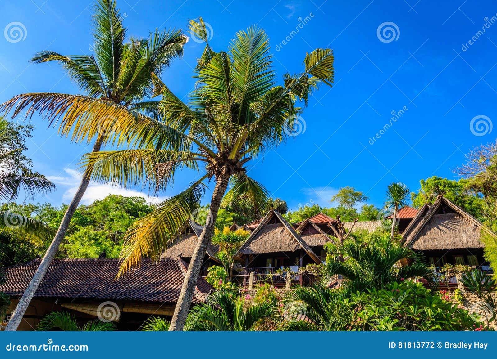 Бунгала пальм и крыш, Nusa Lembongan, Индонезия
