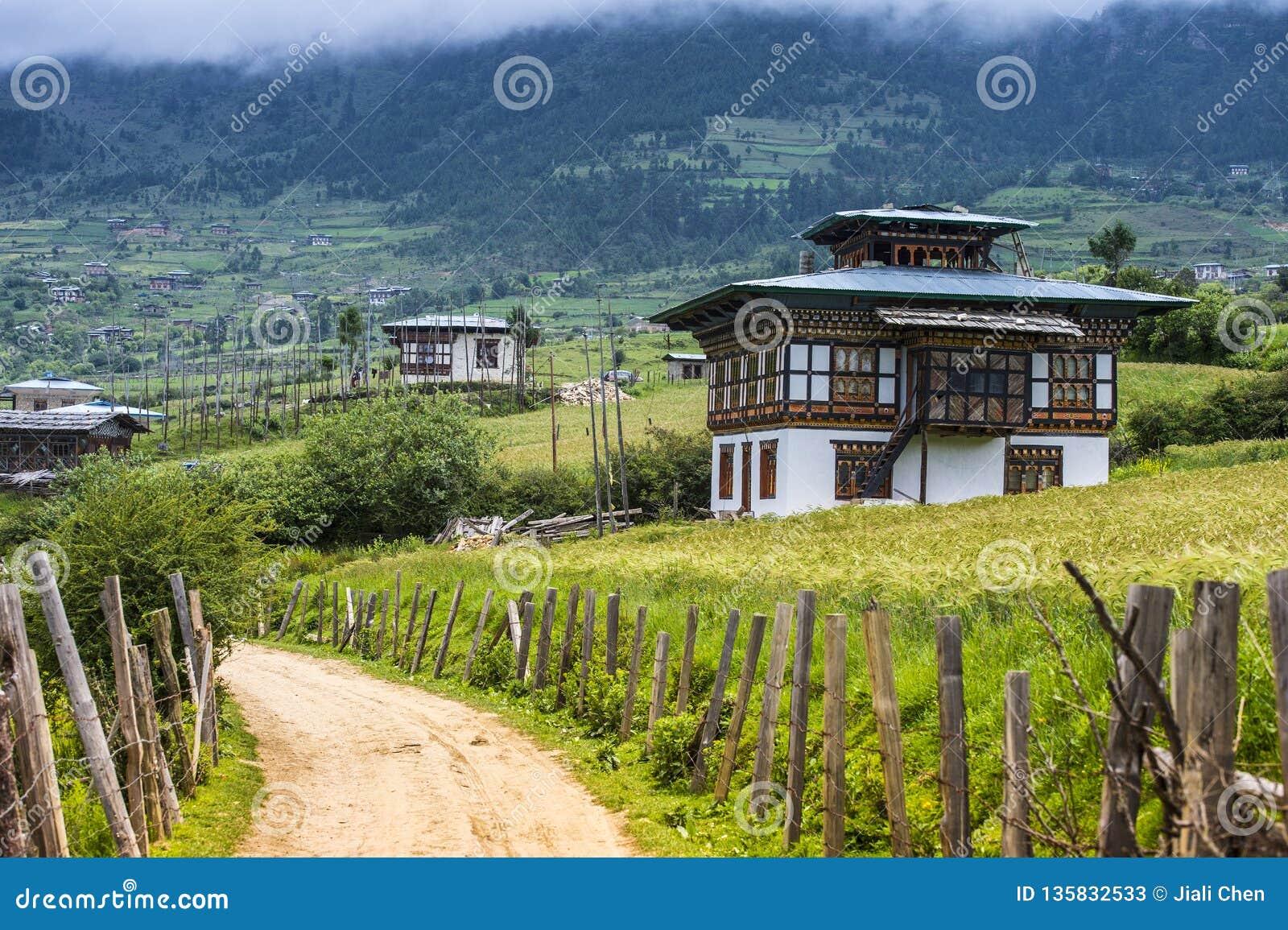 Бутанское поле деревни и риса, долина Ura, Бутан