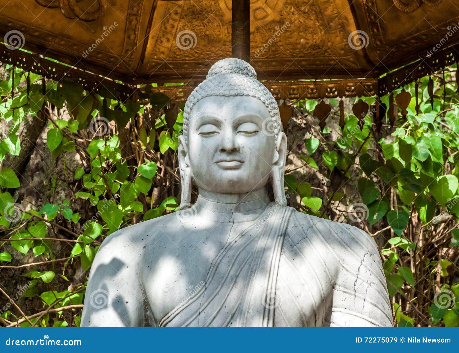 Download Будда стоковое изображение. изображение насчитывающей корабль - 72275079